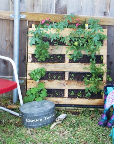 How to Build a Pallet Garden